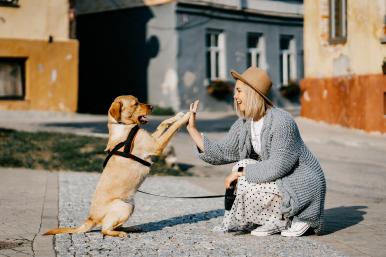 Dziewczyna w kapeluszu przybija piątkę z psem.