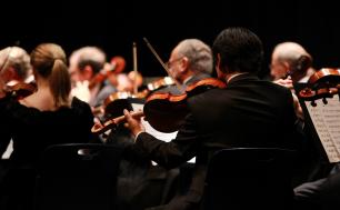 kobiety i mężczyźni ubrani na czarno grający na skrzypcach; wszyscy siedzą tyłem