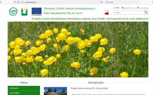 Na zdjęciu widzimy obrazek przedstawiający główną stronę internetową Parku Krajobrazowego Dolina Słupi; widać adres www.dolinaslupi.pl i artykuły m.in. z obrazkami pięknych żółtych kwiatów