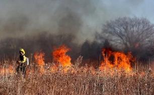 Strażak gasi pożar traw.